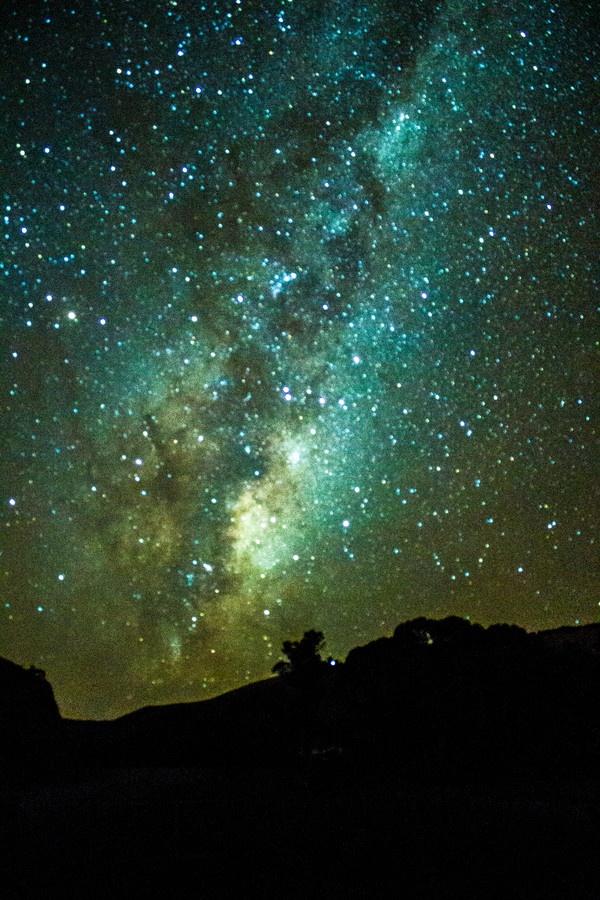 Milkyway New Zealand