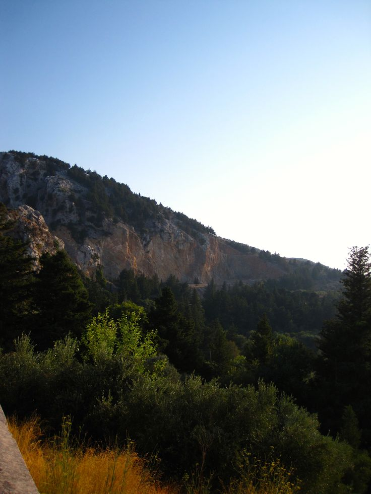 Kos - Greece - Mountain - Trees