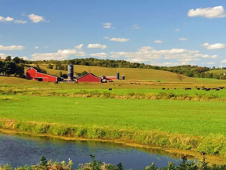 Live life in the local style in the Amish country, USA