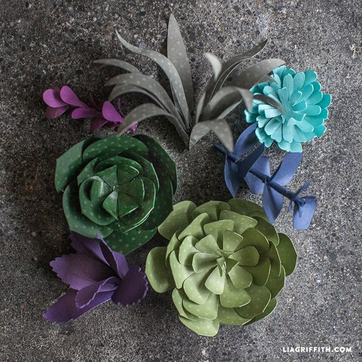 Tutorial for Seven Paper Succulents