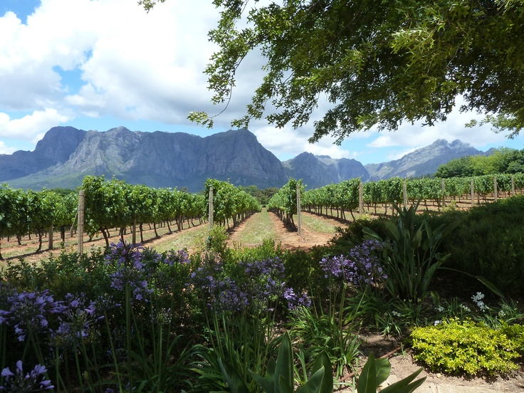 Delaire Graff Estate, Stellenbosch Winery, South Africa
