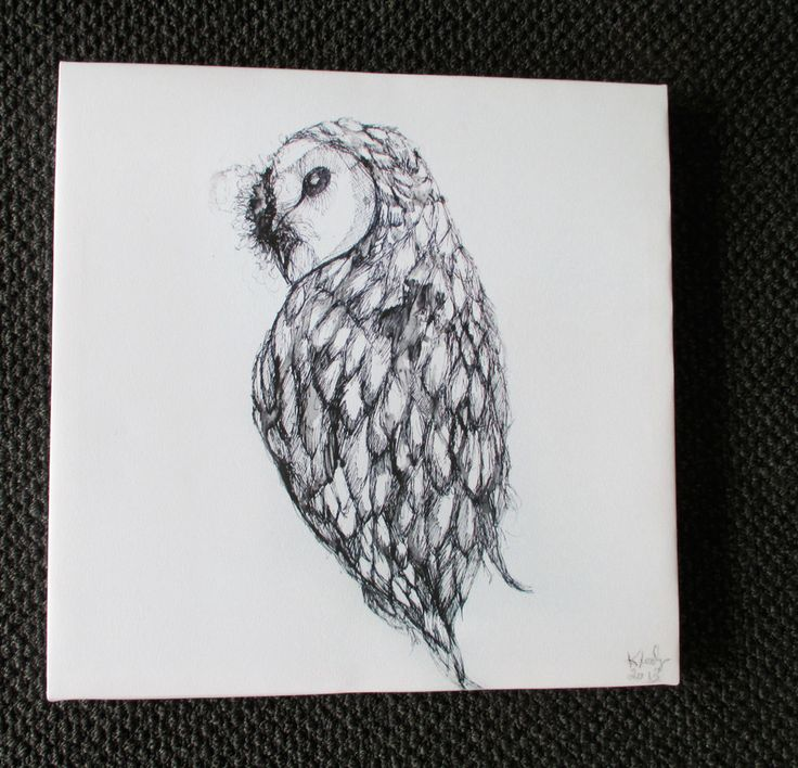 owl look over shoulder