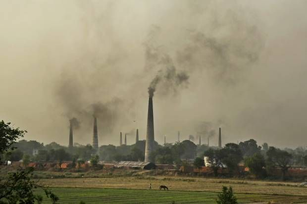 Historic ruling will force Netherlands government to reduce carbon emissions