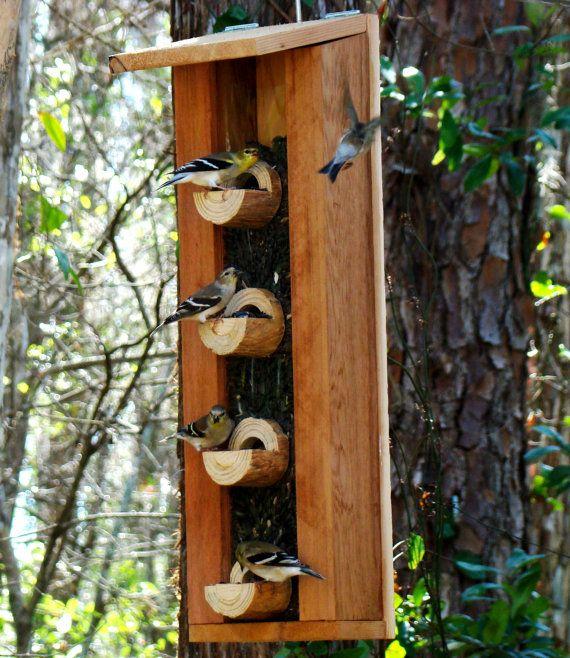 124 best images about bird feeder on pinterest bird for Unique homemade bird feeders