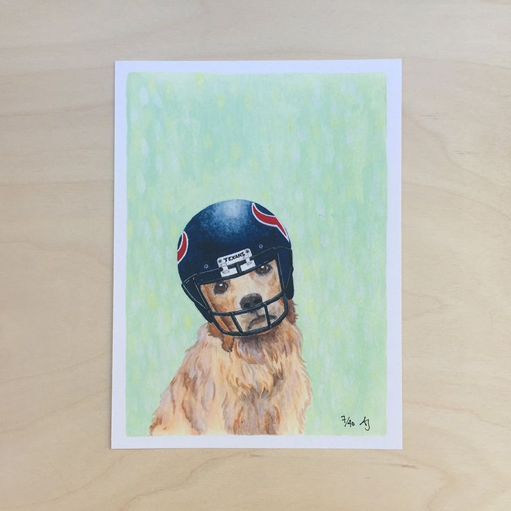 Golden Receiver: Texan - punny dog art by fuzzygrapefruit on Etsy #art #illustration #dog #football #helmet #goldenretriever #Texas #Texans #puns
