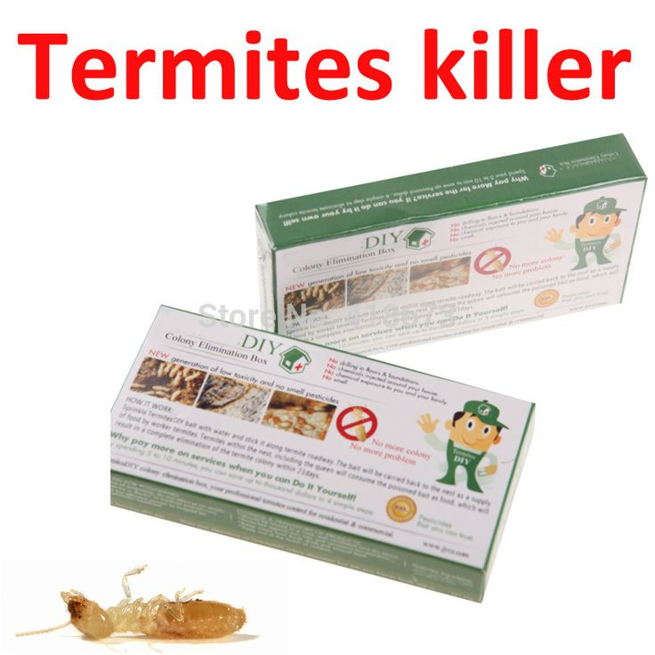What Kills Termites? We Have The Answer!
