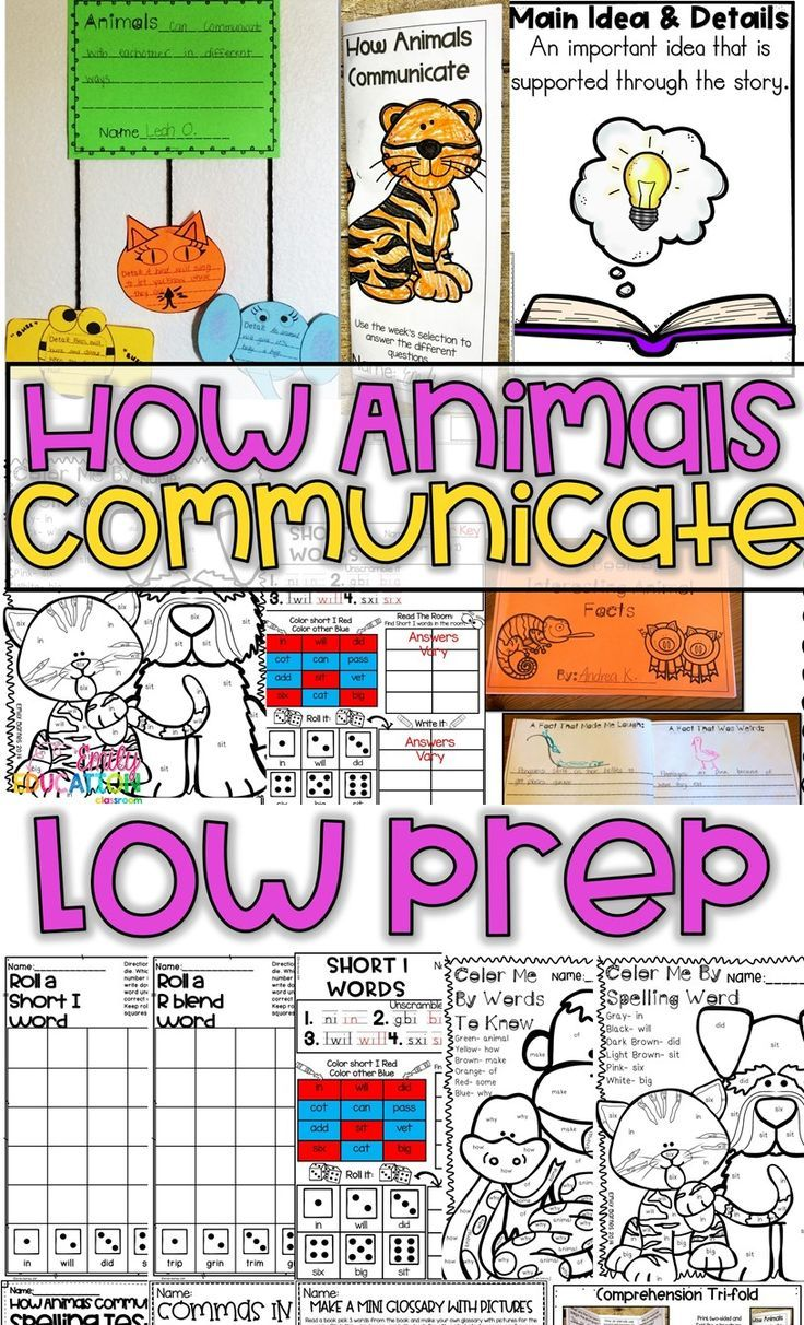 how animals communicate journeys 1st grade supplement activities lesson 7 classroom crafts. Black Bedroom Furniture Sets. Home Design Ideas