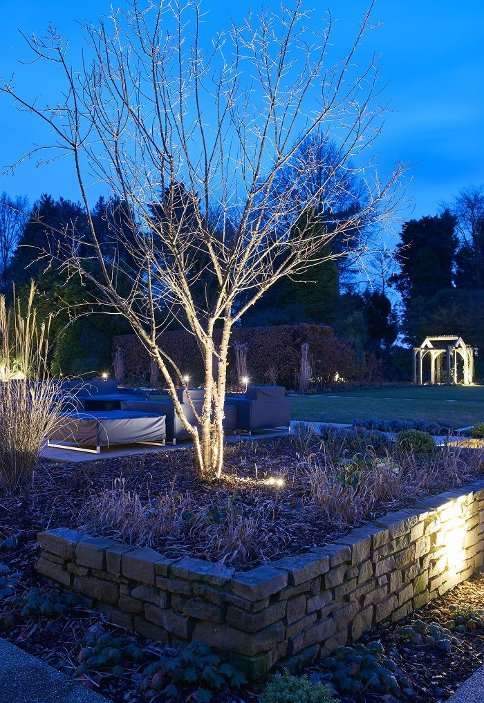 Led Garden Lighting Softly Uplights The Tree Framing The Seating Area With Images Led Garden Lights Garden Lighting Creative Lighting