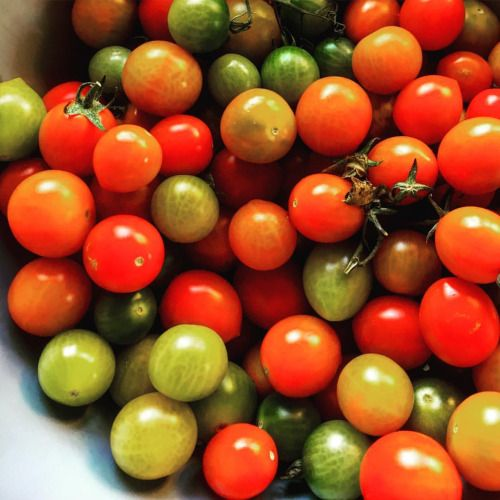 Fresh tomatoes from the local farmers market. #Tomatoes...