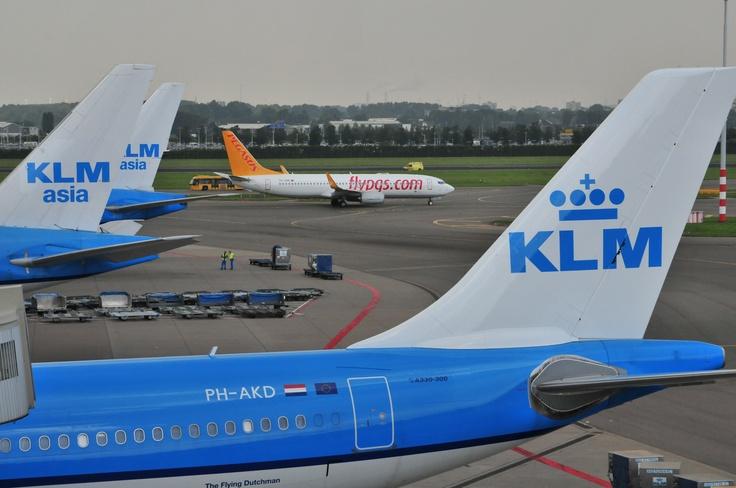 """Pegasus Boeing 737 behind KLM planes - """"small"""" versus """"big"""" :-)"""