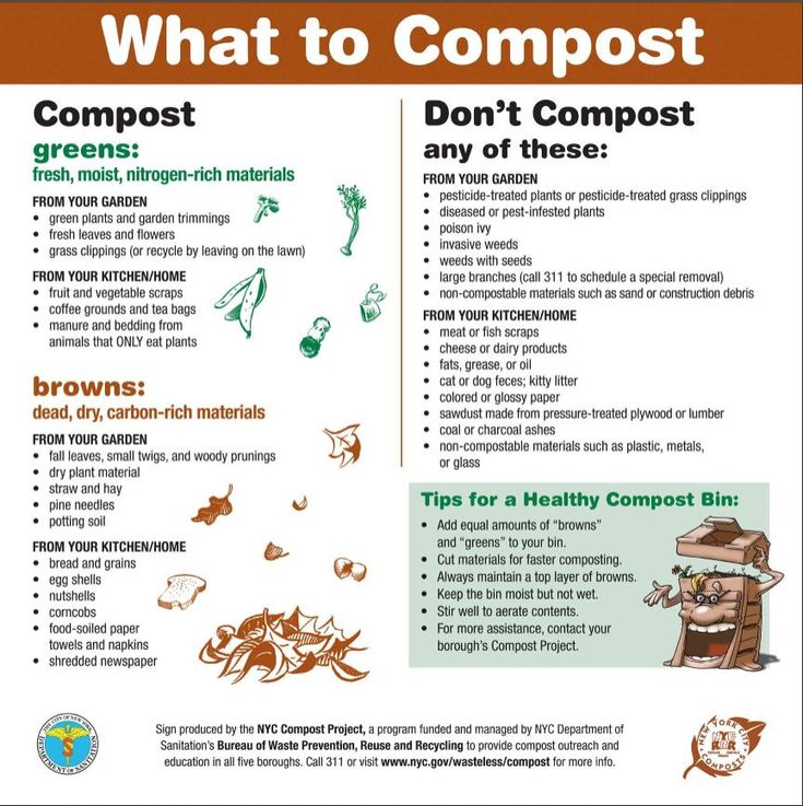 16 Foods That Ll Re Grow From Kitchen Scraps: PDF Of Sign For What To Compost And The Things You Don't