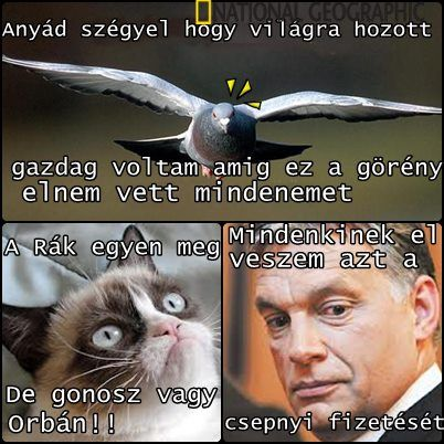 Elég a mocskos balliberális provokációból, folyamatos Orbán-gyalázásból    Egyes, látszólag jobbos mémek nagyon nem tiszta forrásból származnak...