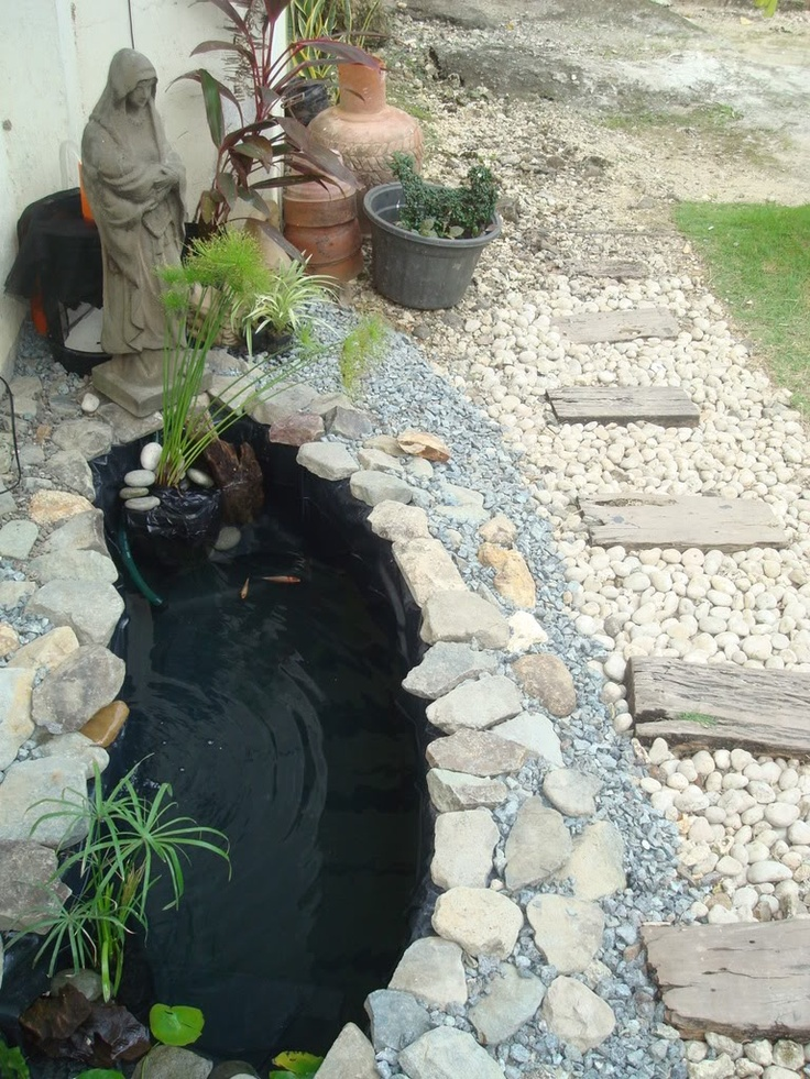 25 best ideas about coy pond on pinterest outdoor fish for Fishing ponds columbus ohio