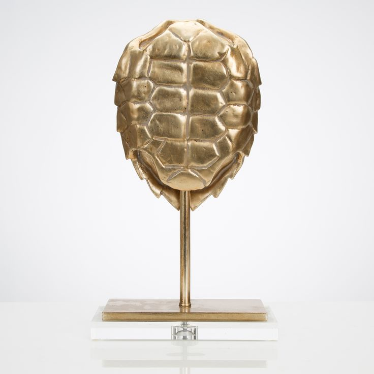 Large Champagne Turtle Shell on Acrylic Stand
