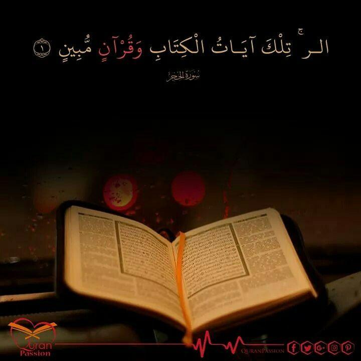 قرآن ربنا جميل بينور القلوب وبيصنع شخصية سوية مفيهاش تعدي على الحقوق وفيها وصل للرحمن Quran Quotes Quran Passion