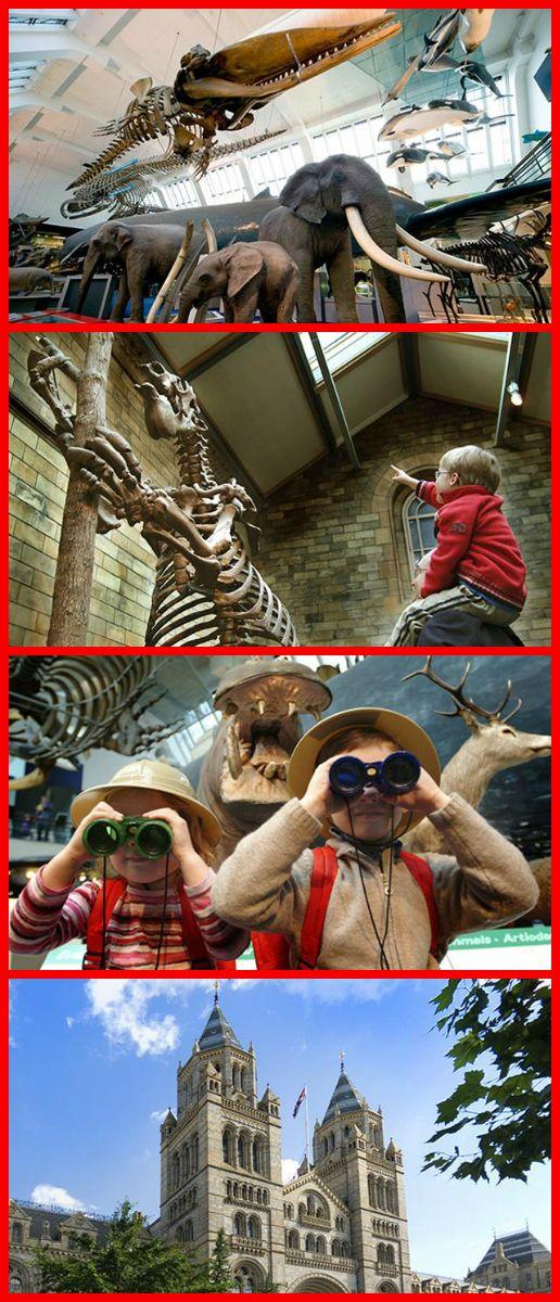 Cheap Hotels Near Natural History Museum London