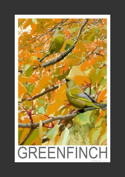 Greenfinch amongst autumn leaves (Art Print)