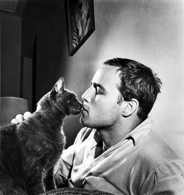 vintage everyday: Marlon Brando with His Cat at Home, circa 1950s