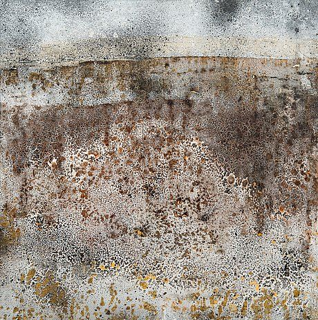 REIDAR SÄRESTÖNIEMI, LAPIN SYKSY. Öljy kankaalle 117x117 cm.