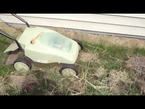 Lawn Care - using moldy hay as lawn fertilizer - http://www.richsoil.com/lawn-care.jsp  Take moldy hay and tear it up into chunks. Then sprinkle the chunks onto the lawn before mowing. Then mow it in. Simple!