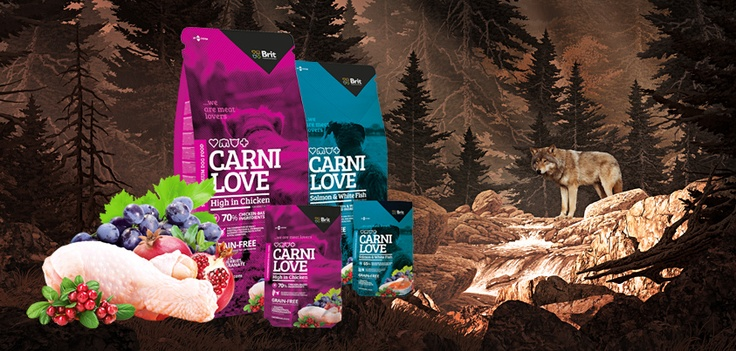 www.carnilove.cz – our brand new pride! #wedesign #web