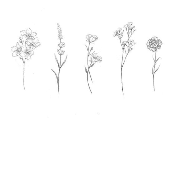 Tattoo Carnation Baby And Breath