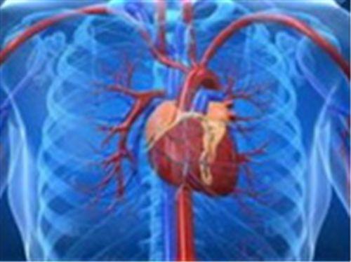 Δραγομάνοβιτς Σπυρίδων - Καρδιολόγος ΓΛΥΦΑΔΑ