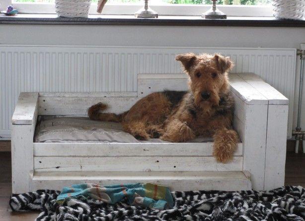 Hondenmand gemaakt van oude pallets.
