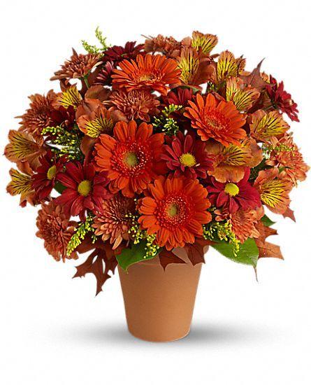 Teleflora s golden glow flowers rich fall arrangement of