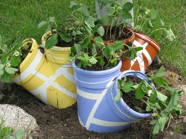 Best 25 Pvc Pipe Garden Ideas Ideas On Pinterest Moving