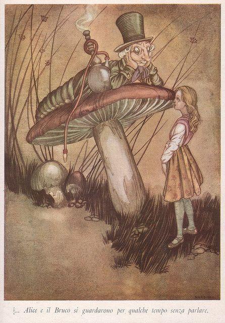 Alice in Wonderland illustration by Nardini   Flickr
