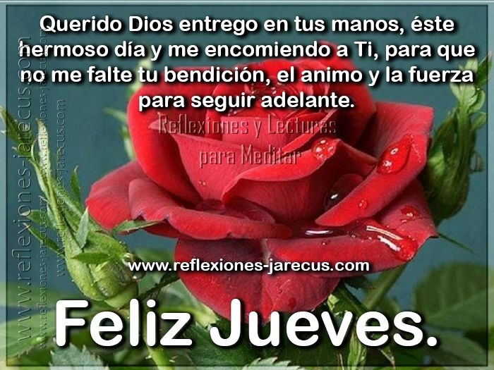 Feliz jueves, gracias Padre mio, por otro día mas de bendiciones