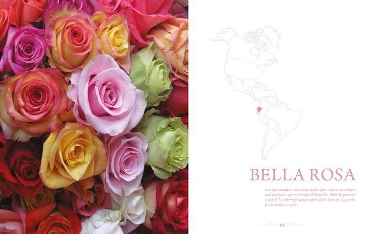 E-Book de Flores y Ambientación