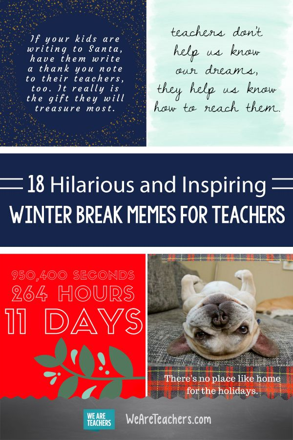 18 Hilarious Winter Break Memes Solely a Trainer Will Perceive