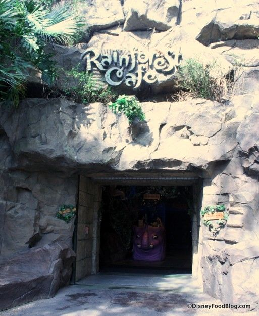 Review of Breakfast at Rainforest Cafe in Disney's Animal Kingdom