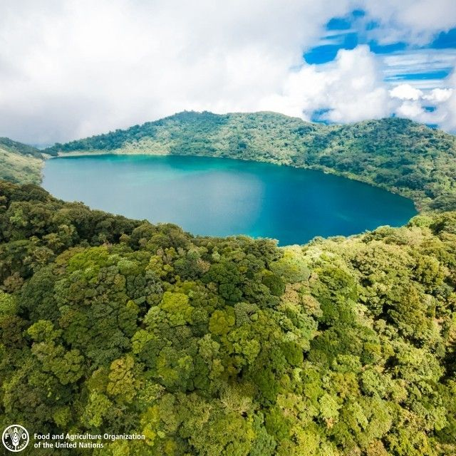 【helainehas】さんのInstagramをピンしています。 《regram @unfao Vulcan Ipala, in Guatemala, surrounded by a forest. Forests are among the most important repositories of terrestrial biological diversity. Together, tropical, temperate and boreal forests offer very diverse habitats for plants, animals and micro-organisms. Biological diversity is the basis for a wide array of goods and services provided by forests. The variety of forest trees and shrubs play a vital role in the daily life of rural communities…