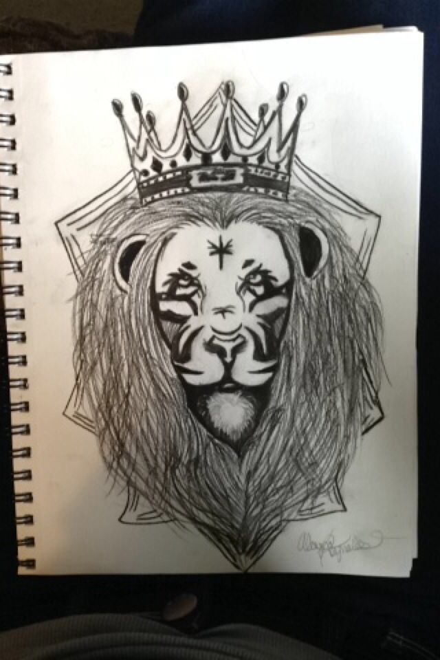 Lebron James lion symbol Drawn by Alayna Reynolds age 14