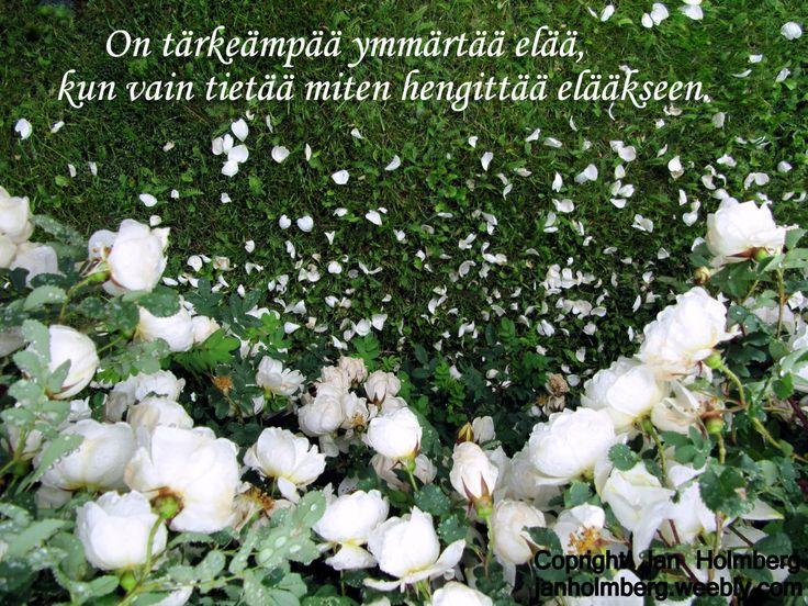 http://janholmberg.weebly.com/2/post/2013/03/on-trke-ymmrt-el.html