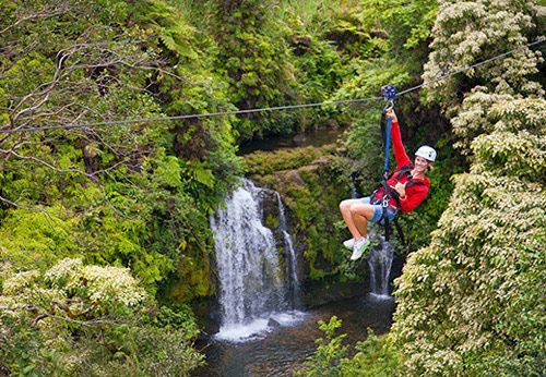 Buy tickets online to the Akaka Falls Skyline Eco-Adventure zipline tour on the Big Island.