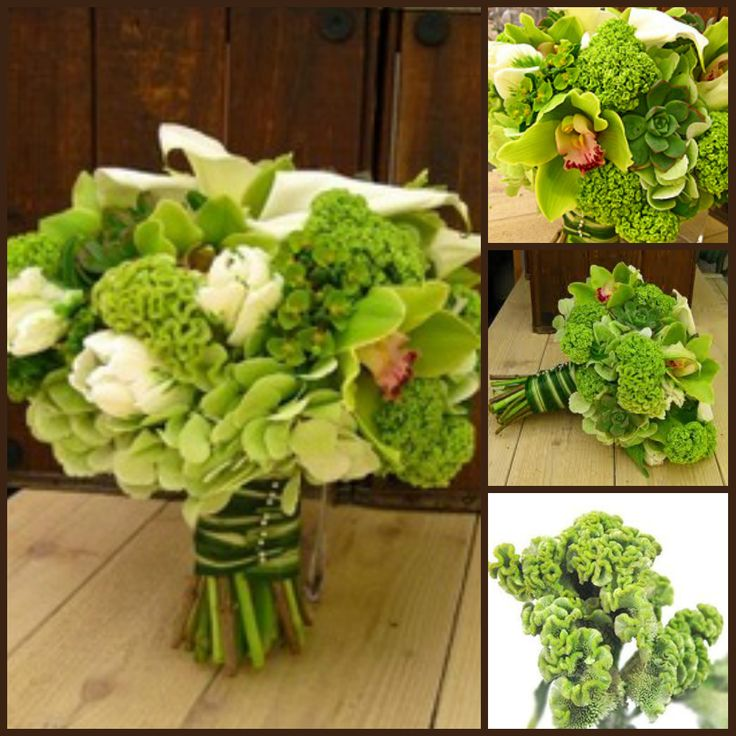 this bouquet features green cymbidium orchids, white tulips, and green coxcomb. (ignore the rest)