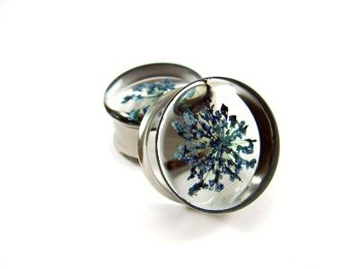 Blue Queen Anne's Lace Embedded Flower Plugs gauges - 5/8, 3/4, 7/8, 1 inch. $24.99, via Etsy.