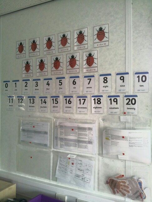 Ladybird number bonds, numbers to 20 and handy A4 pockets on the wall to organise planning, timetable and interventions.