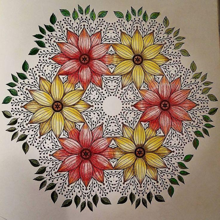 Autun flowers.