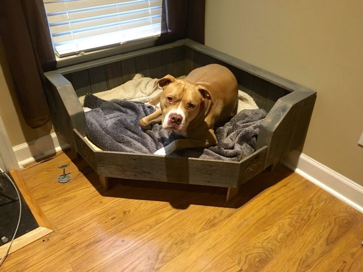 Pallet Dog Bed / Corner Fit / Handcrafted Dog Bed / Corner Dog Bed by Pallets4Paws on Etsy https://www.etsy.com/listing/268462120/pallet-dog-bed-corner-fit-handcrafted