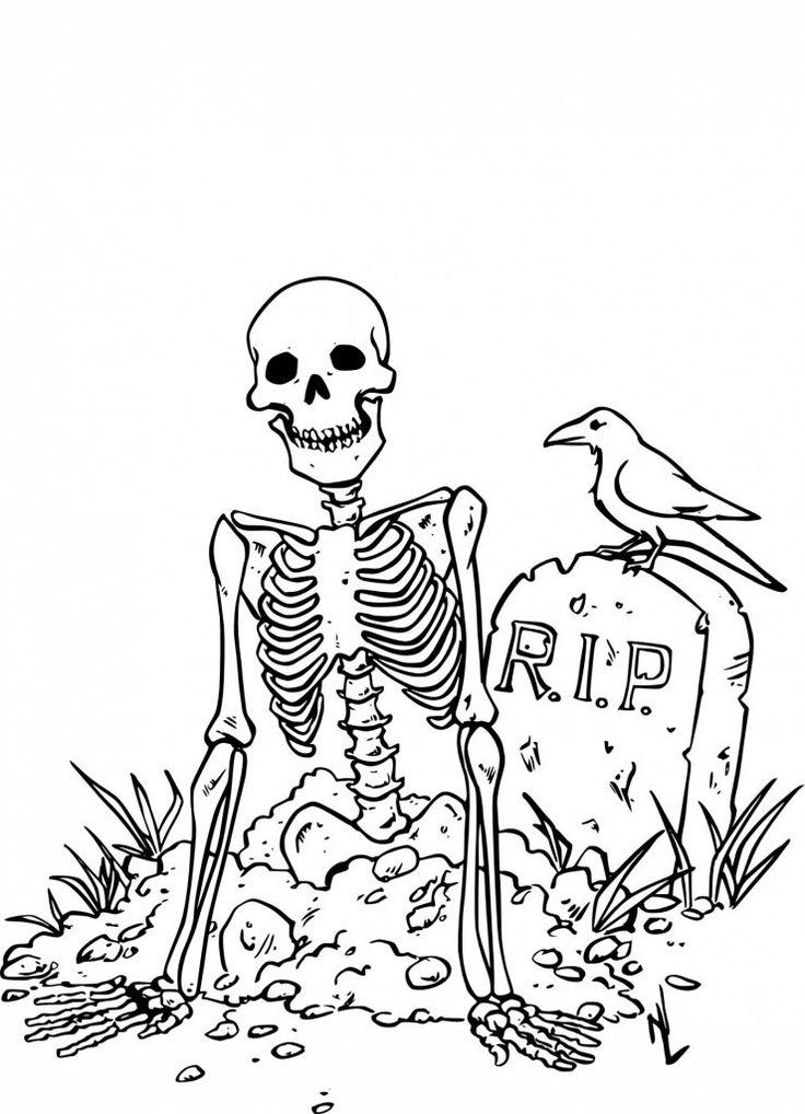 Épinglé par Vmariehelene sur Trucs de chat | Dessin halloween, Coloriage squelette, Coloriage