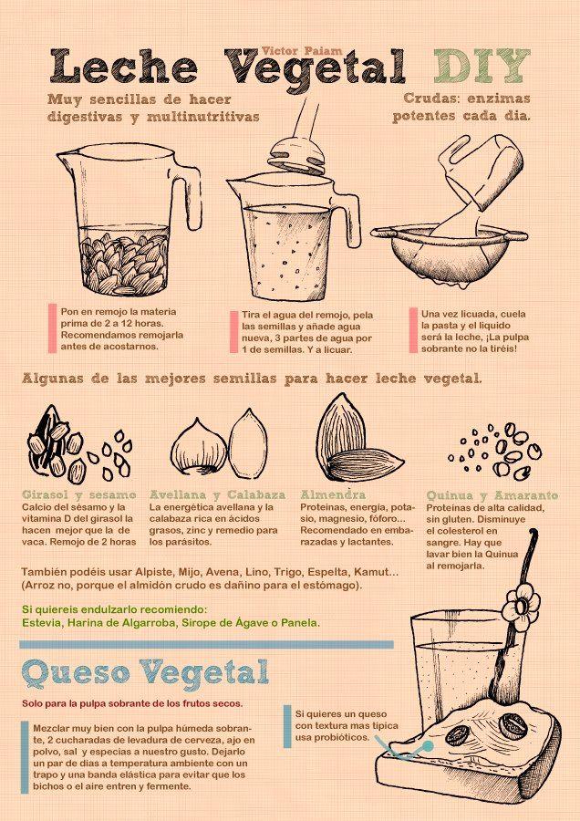 ¿Quieren opciones para dejar los lácteos? Receta para leche y queso Vegetales #salud #pinterest