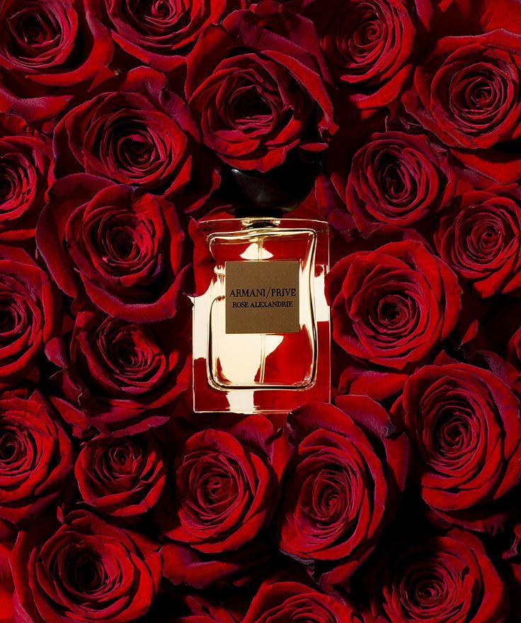 ARMANI / PRIVÉ Rose Alexandrie fragrance