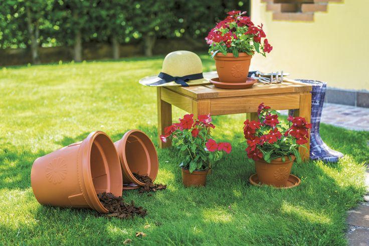 La Linea Primavera è composta da prodotti leggeri e robusti, resistenti a qualsiasi condizione ambientale. Un simpatico fiore stilizzato e il caldo color terracotta rendono questi vasi armoniosi e perfettamente integrabili ovunque.
