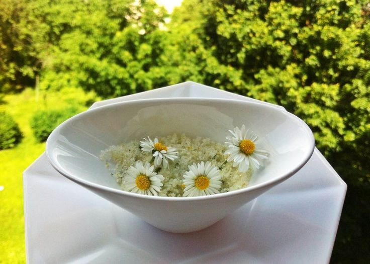 Gänseblümchen-Zucker herstellen