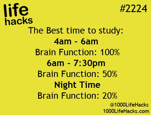Best time to study | 1000 Life Hacks